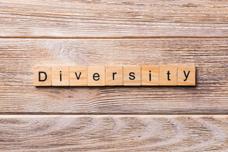 Diversity-360x240.png