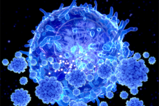 TCell-360x240.png